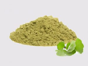 Organic ginkgo biloba leaf extract powder