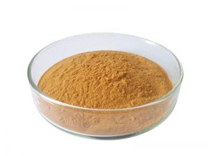 Organic-Oolong-Tea-Extract-Powder